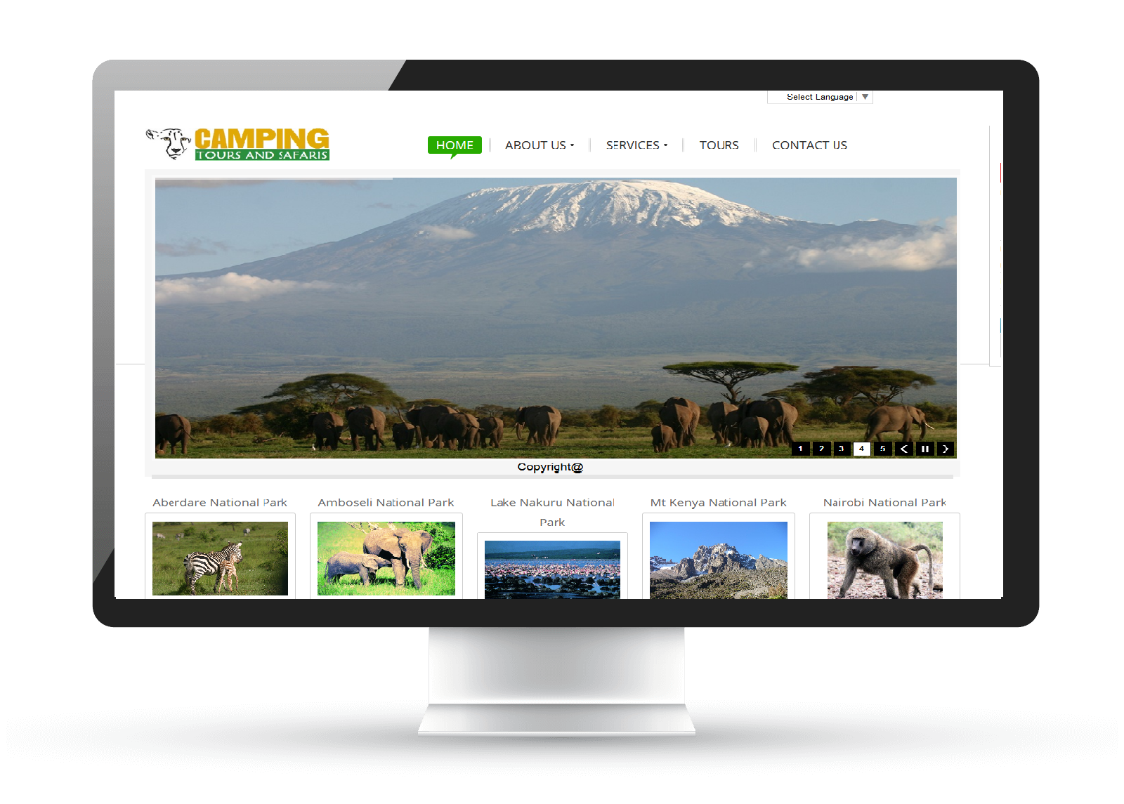 Camping Tours and Safaris