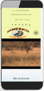 hamerkop safaris